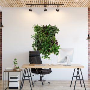 6 Plantwalls for the office