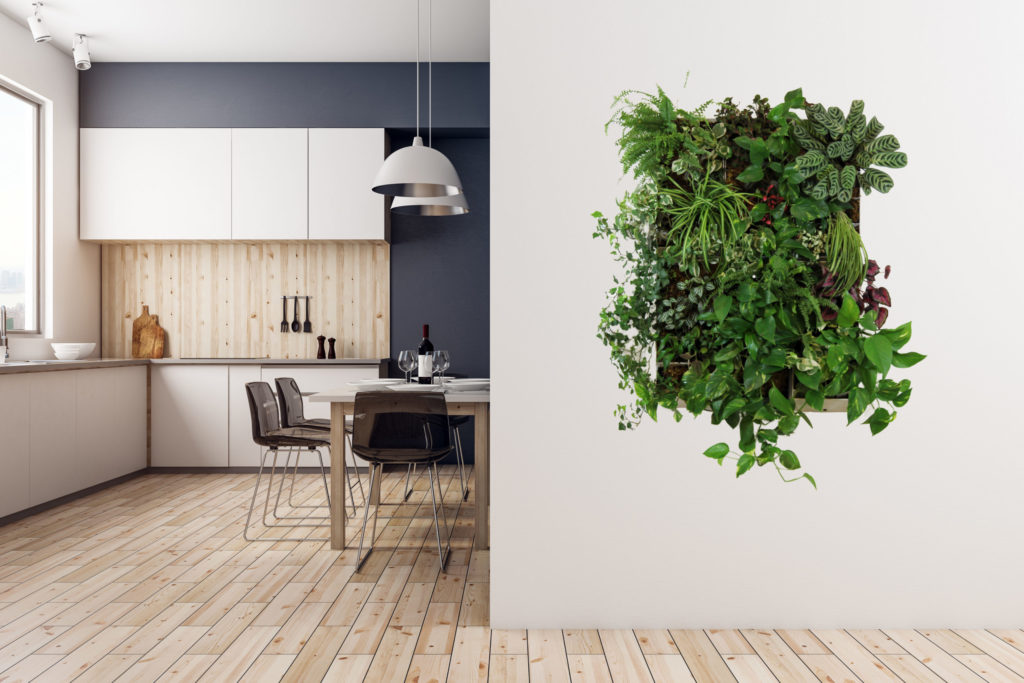 PlantWallBox - build your own plant wall